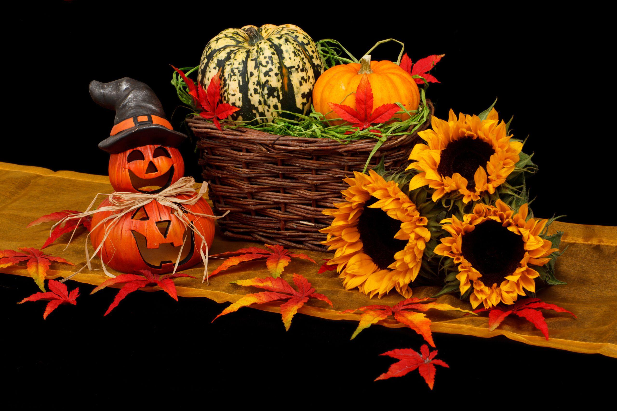 Herbstferien-Programm Tipp